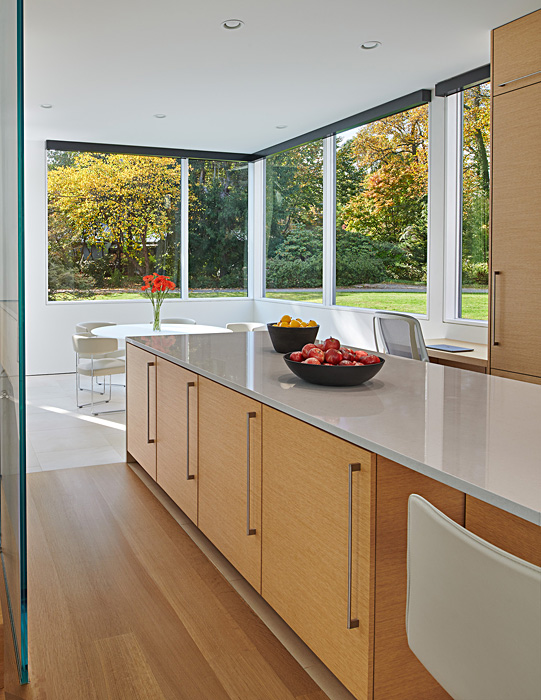 Levell Drive Residence contemporary kitchen with windows